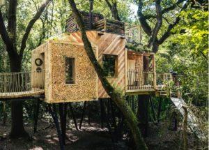 Как построить дом на дереве – воплощаем детскую мечту